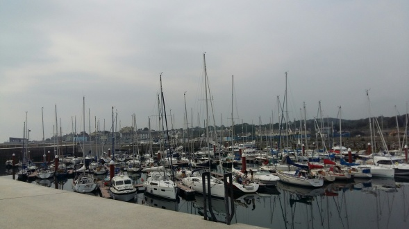 Photo of a boat harbor